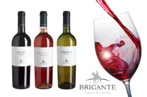 """""""Brigante"""", l'amore per il vino da quattro"""